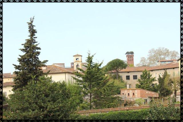 Vista des de la muralla de Lucca II.