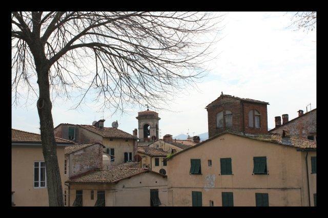 Vista des de la muralla de Lucca IV.