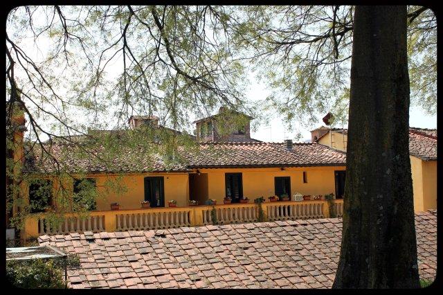 Vista des de la muralla de Lucca VI.