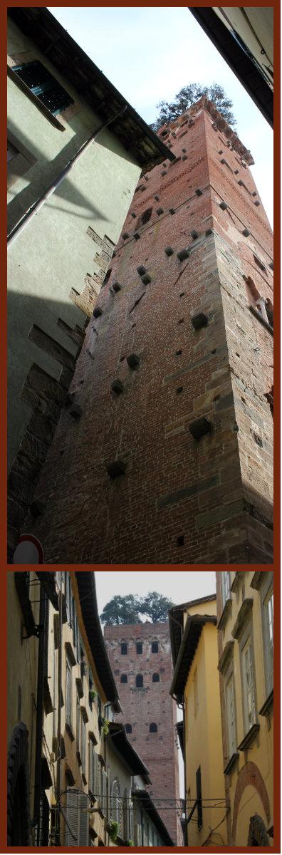 Lucca. Torre Dei Guinigi.
